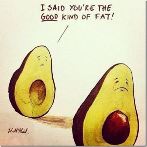 b0d48b54e590e50d3e49d57da072cc22--avocado-fat-avocado-puns
